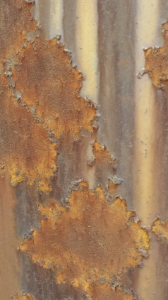 Tanya Mikulas photographer, oxidation 2015, 125310
