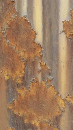 Tanya Mikulas photographer, oxidation 2015, 125310