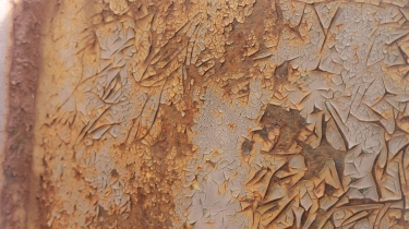 Tanya Mikulas photographer, oxidation 2015, 130008