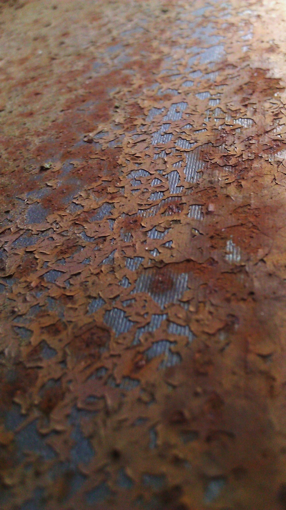 Tanya Mikulas, photographer, IMAG5558 oxidation