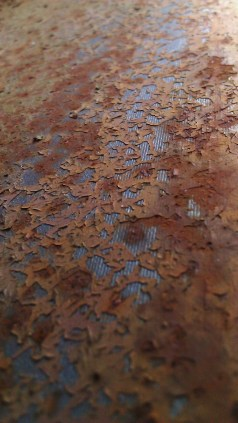 Tanya Mikulas, photographer, IMAG5558 oxidation