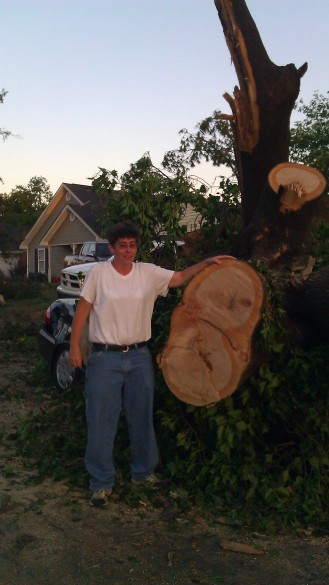 Now you can sorta start to see how giant this tree was. (photo by Tanya Mikulas)